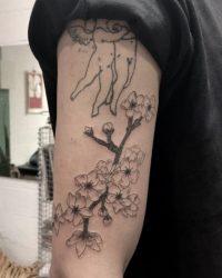 תום lev tattoo