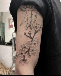 תום - lev tattoo, klara coral